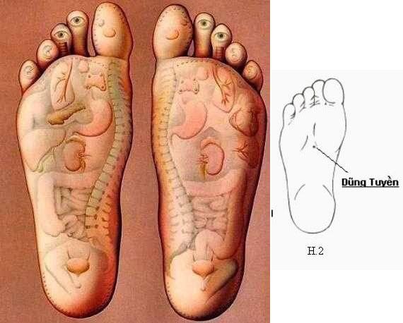 Phương pháp massage bấm huyệt dưỡng sinh